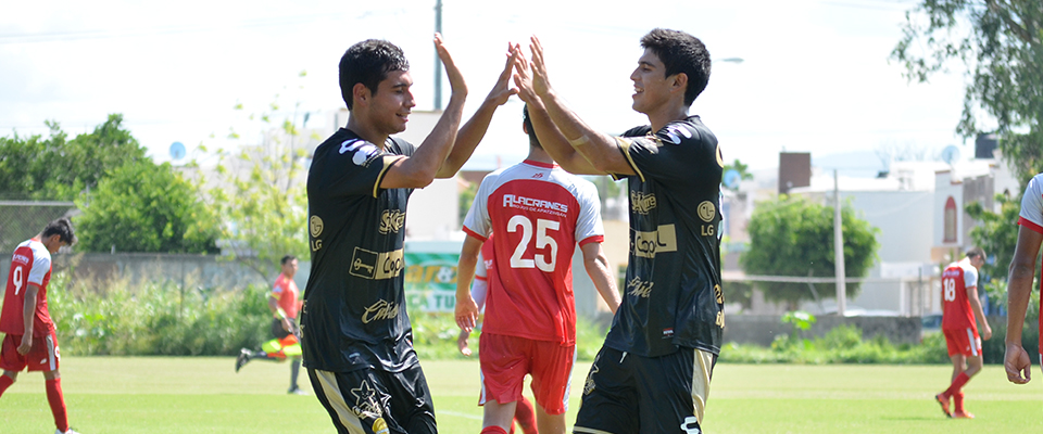 Dorados llega de ganar 12-1 en su partido anterior ante Alacranes
